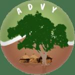 logo advy